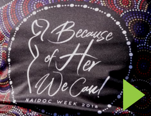 Shoalhaven NAIDOC Family Fun Day » Grand Pacific Health